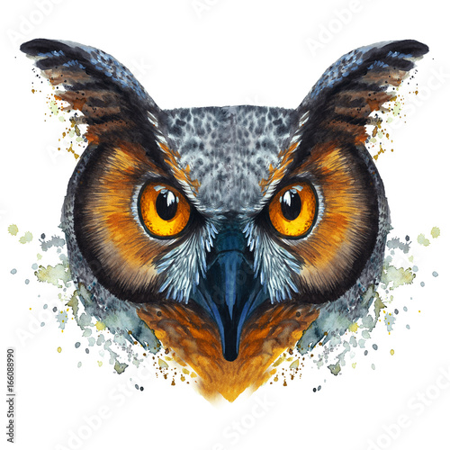 Foto op Aluminium Uilen cartoon A drawing of a night owl, painted by watercolors, an owl with a bright coloring