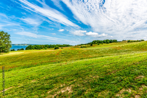 Foto op Canvas Klaprozen Landschaft mit Mohnblumen