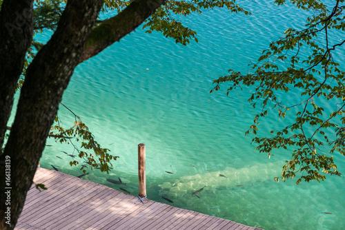 Foto op Aluminium Pier Wooden footpath along beautiful lake