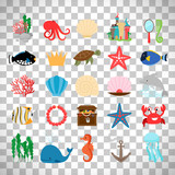 Marine life and cartoon ocean animals