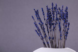 Lavender flowers on a gray background. Macro