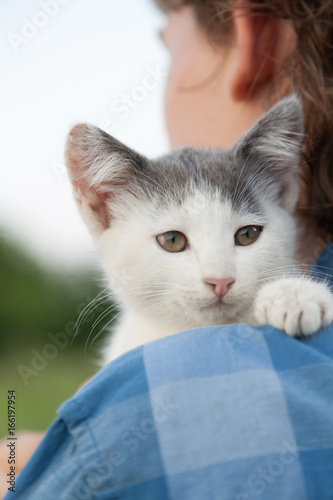 Poster kitten on the shoulder of the boy outdoors