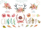 Set of vector elements from leaves and flowers