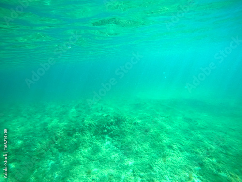 Foto op Aluminium Groene koraal Colorful sea floor in Sardinia