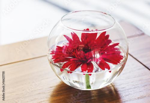 Interior flower gerbera in round vase on wooden table