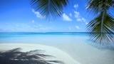 paysage de plage paradisiaque à tahiti, polynésie  - 166224301