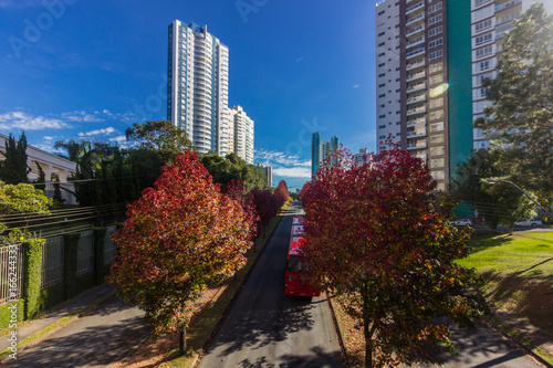 Curitiba, Brazil - Amazing autumn in south of Brazil. Building architecture in the city. Bus of public transportation system.