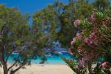 Cyclades Greece landscape - 166256398
