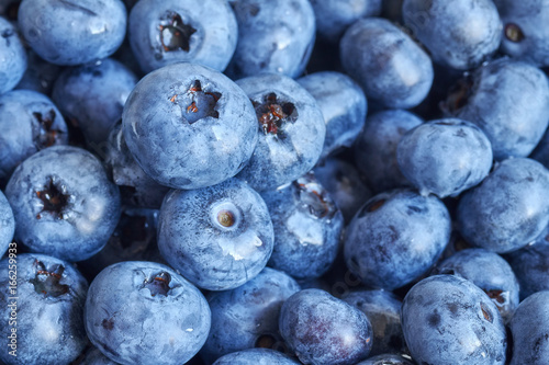 Close up picture of ripe and fresh blueberries, shallow depth of field. - 166259933