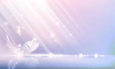 Soft pink background with smooth lines and with a feather