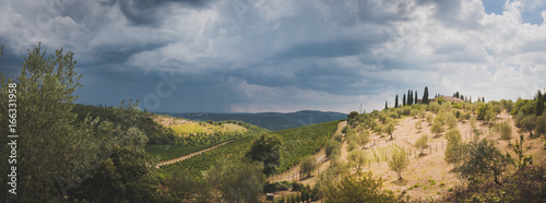Weinberge und Olivenhaine in der Toskana, Panorama