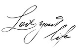 Phrases inspirational quotes handwriting text vector love your life. Each word is on the separate layer