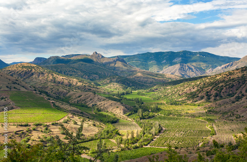 Foto op Aluminium Wijngaard Landscape mountain valley with vineyards at the foot of the valley on a background cloudy sky