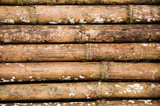 Old bamboo texture background