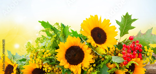 Bunch of sunflowers with green leaves and red berries on wood, blue bokeh sky in background banner