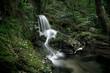 Cascade d'Auzon - 166447768