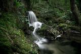Cascade d'Auzon