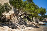 Beside the Fracsiscan Monastery, Lopud, Dalmatian coast, Southern Croatia.  One of the Elaphiti islands. - 166452513