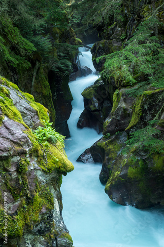 Tosender Avalanche Creek im Glacier National Park, Montana Poster