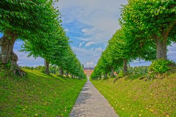 Weg mit Lindenbäumen zum Schloss Bothmer