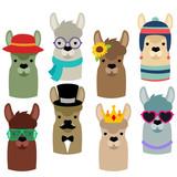 Llama Heads
