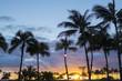 ハワイ ヤシの木と夕日