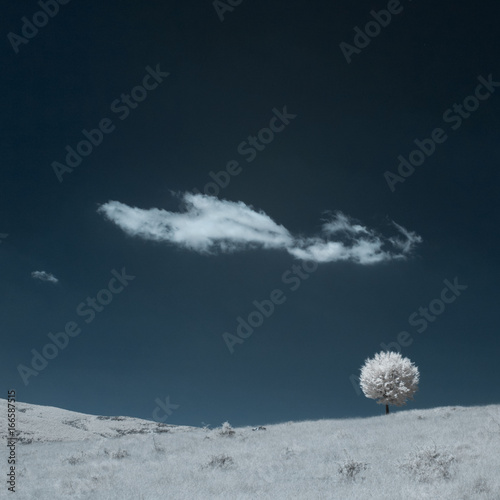 Foto op Canvas Nachtblauw Infrared photography - mountain landscape and details
