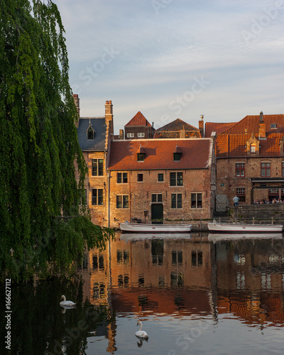 Papiers peints Bruges Swans swim in a canal in Bruges, Belgium