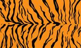 Abstract Tiger skin pattern, Tiger Skin texture