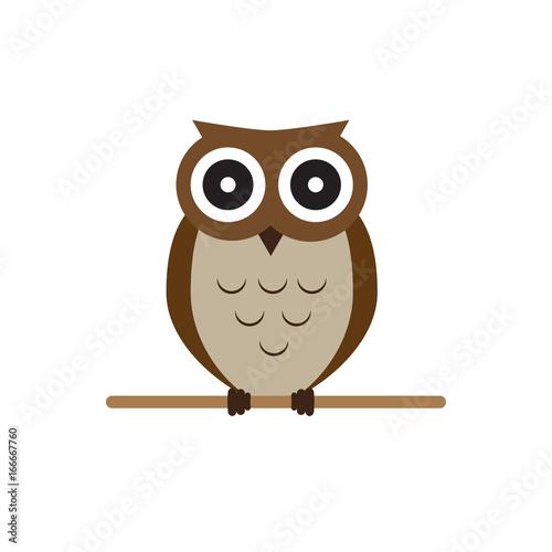 Owl brown vector