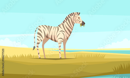 Zebra In The Wild Composition