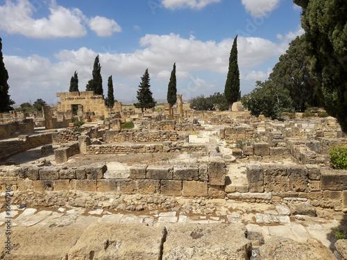 Ruines d'Utique Tunisie Poster