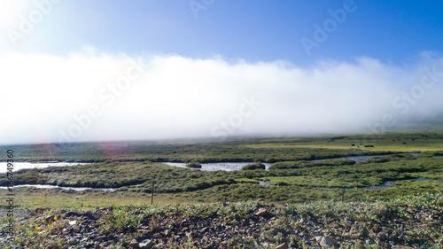 beautiful wetland under mist sky