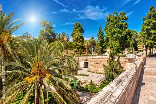 Turia Park Valencia im Gegenlicht