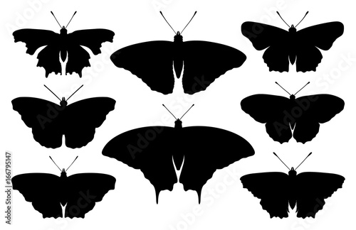 Butterfly collection - vector silhouette illustration