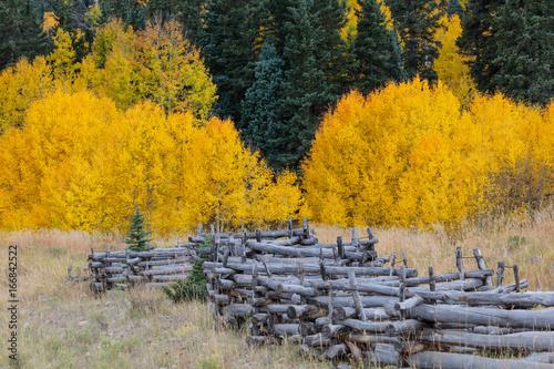 Tuinposter Grijs Colorado Rocky Mountain Scenic Beauty