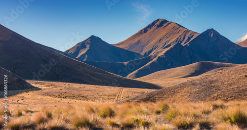 Golden field, mountian and blue sky in Lindis Pass, south island, New Zealand