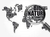 Ecology theme World Map in Typography word cloud with magnifying glass, background concept 3D illustration