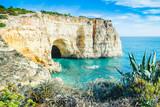 Portugalia Algarve beach jaskinia widok z lokalnych wspólnej roślinności