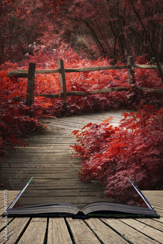 Foto op Aluminium Chocoladebruin Beautiful surreal red landscape image of wooden boardwalk throughforest in Spring concept coming out of pages in open book