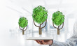 Quadro Eco green environment concept presented by tree as working mechanism or engine