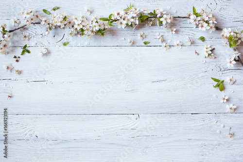 Foto Murales Background with flowering spring branches of plums, cherries