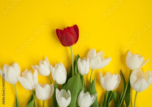 Red flower in white bunch