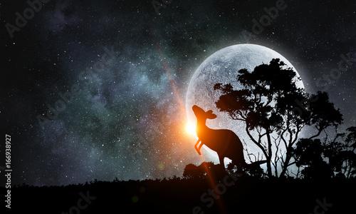 Aluminium Kangoeroe Natural Safari landscape