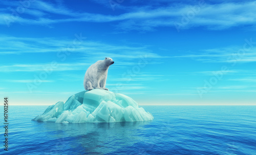 Foto op Canvas Turkoois A polar bear