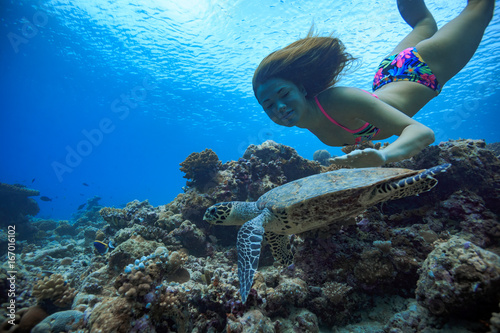Poster Caucasian girl underwater swimming with turtle over corals
