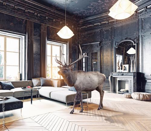 deer in the room. photo combination
