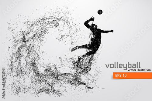 Fototapeta Silhouette of volleyball player.
