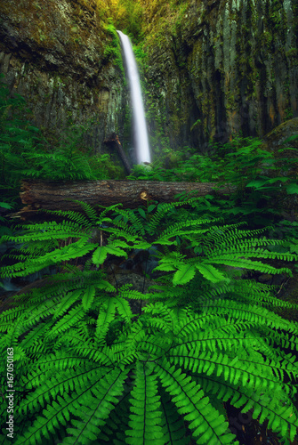 Dry Creek Falls in the Columbia River Gorge, Orgegon