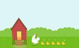 Chicken Coop Hen Chicks